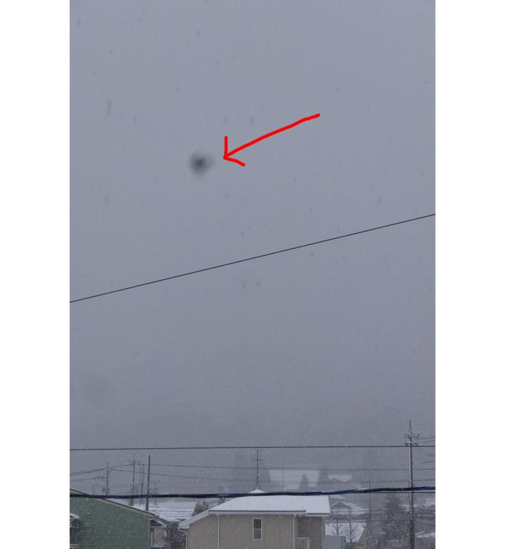 レンズ内のゴミの撮影画像