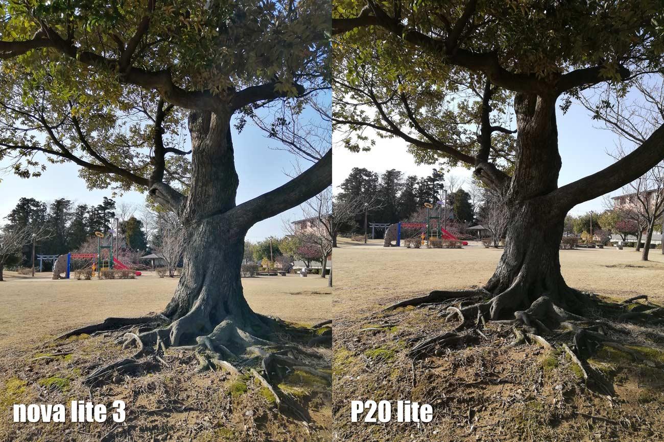 nova lite 3・P20 lite ダブルカメラ画質比較 木と空の色合い