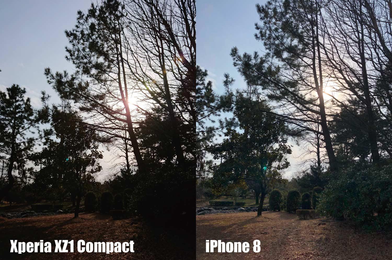 Xperia XZ1 CompactとiPhone 8 カメラ画質比較 逆光