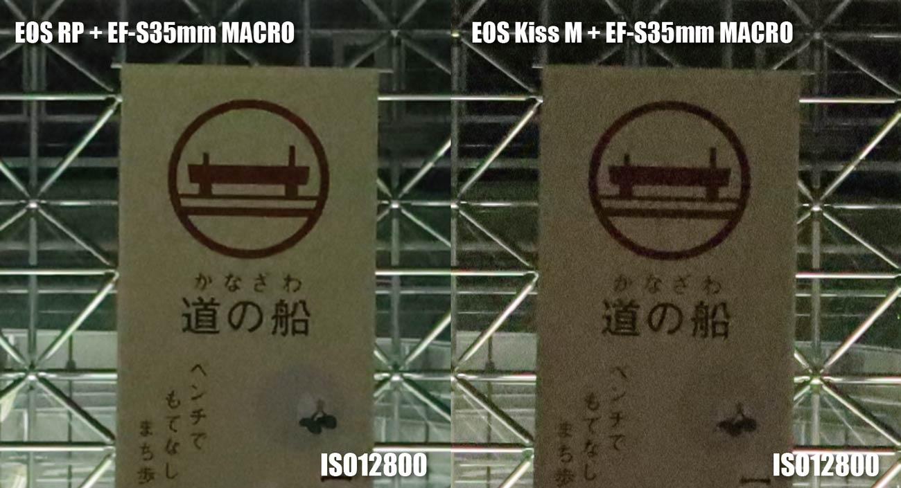 フルサイズとAPS-C ノイズの違い(ISO12800)