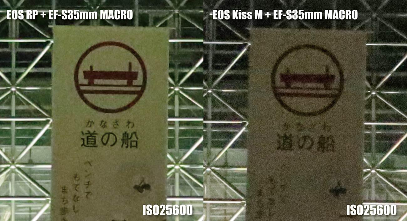 フルサイズとAPS-C ノイズの違い(ISO25600)