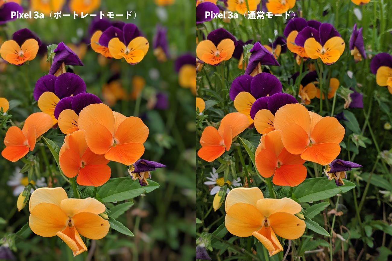 Pixel 3aのポートレートモード(花)
