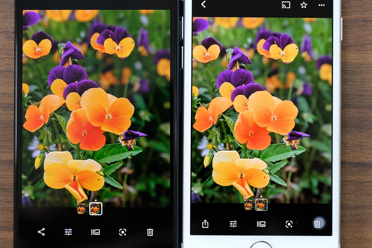 Pixel3aとiPhone 8のディスプレイの色合いを比較