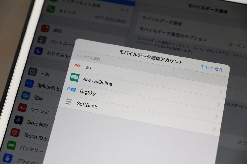 iPad セルラーモデルのApple SIM