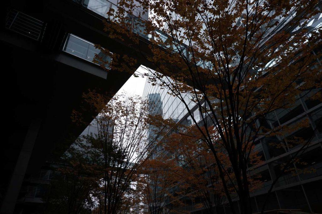 X-A7 + XC15-45mmF3.5-5.6 東京国際フォーラム周辺