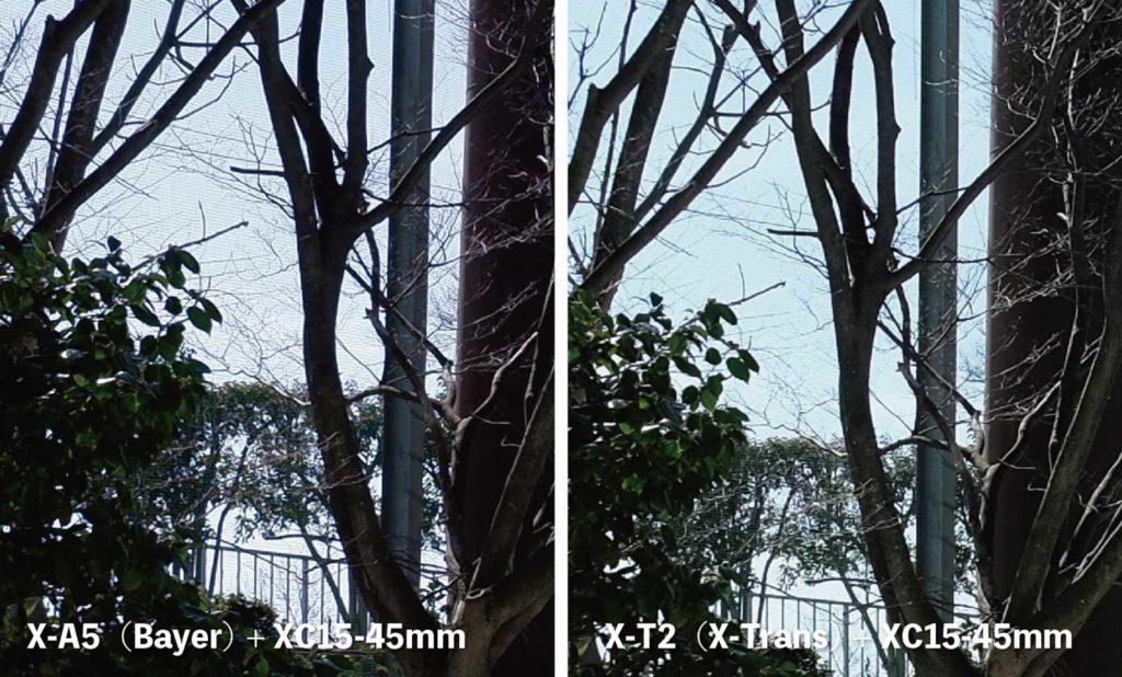 X-Trans・ベイヤー ネットの質感の違いを比較