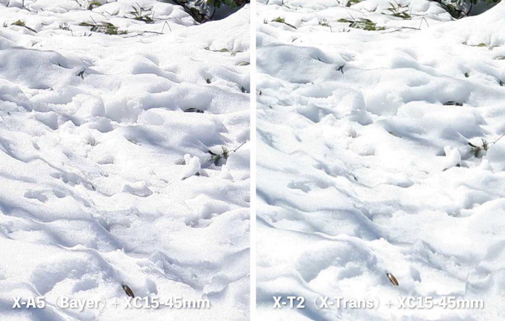 X-Trans・ベイヤー 雪の質感の違いを比較