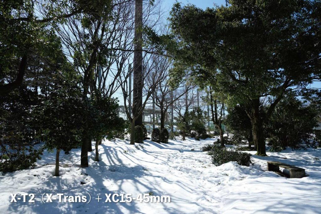 X-T2(X-Trans)+ XC15-45mm 公園の雪