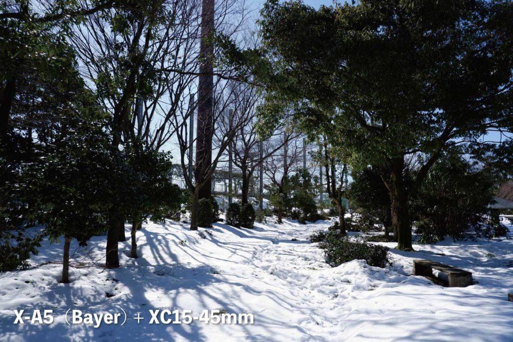 X-A5(ベイヤー)+ XC15-45mm 公園の雪