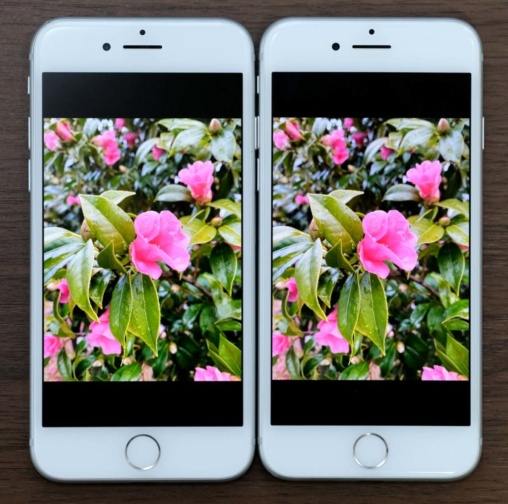 iPhone 7とiPhone 6s ディスプレイの色合いを比較