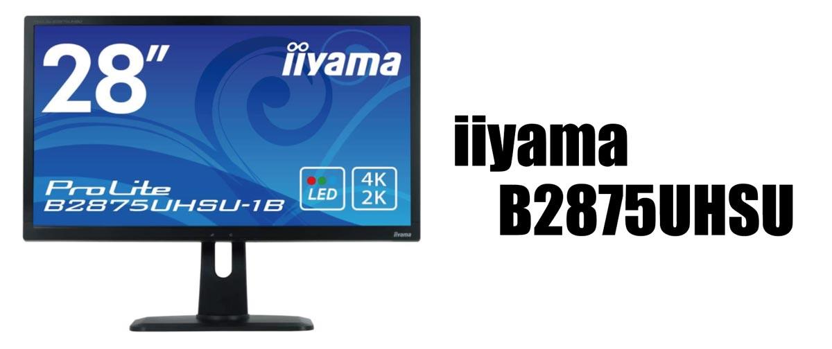 Iiyama B2875UHSU