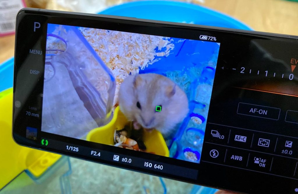 Xperia 1 Ⅱは動物の瞳AFに対応