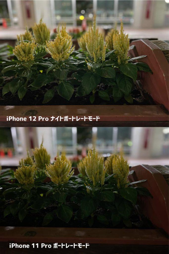 iPhone 12 Pro ナイトモードポートレートモード