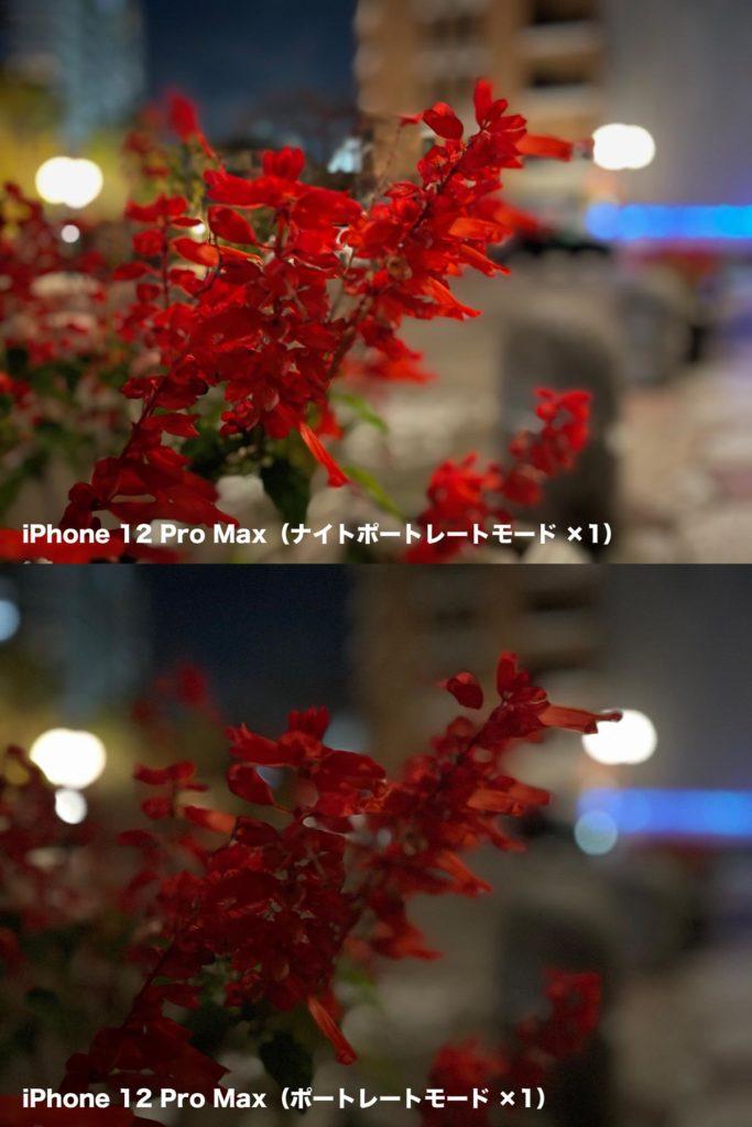 iPhone 12 Pro Max ナイトポートレートモード